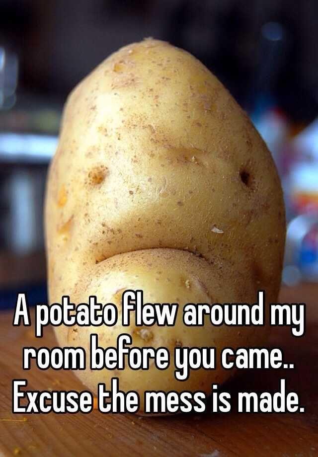 A potato flew around my room